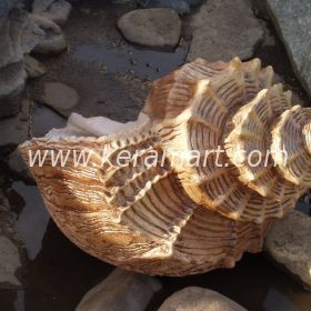 Скульптура из керамики - Ракушка